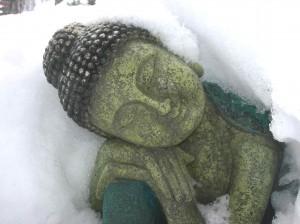 Buddha im Schnee